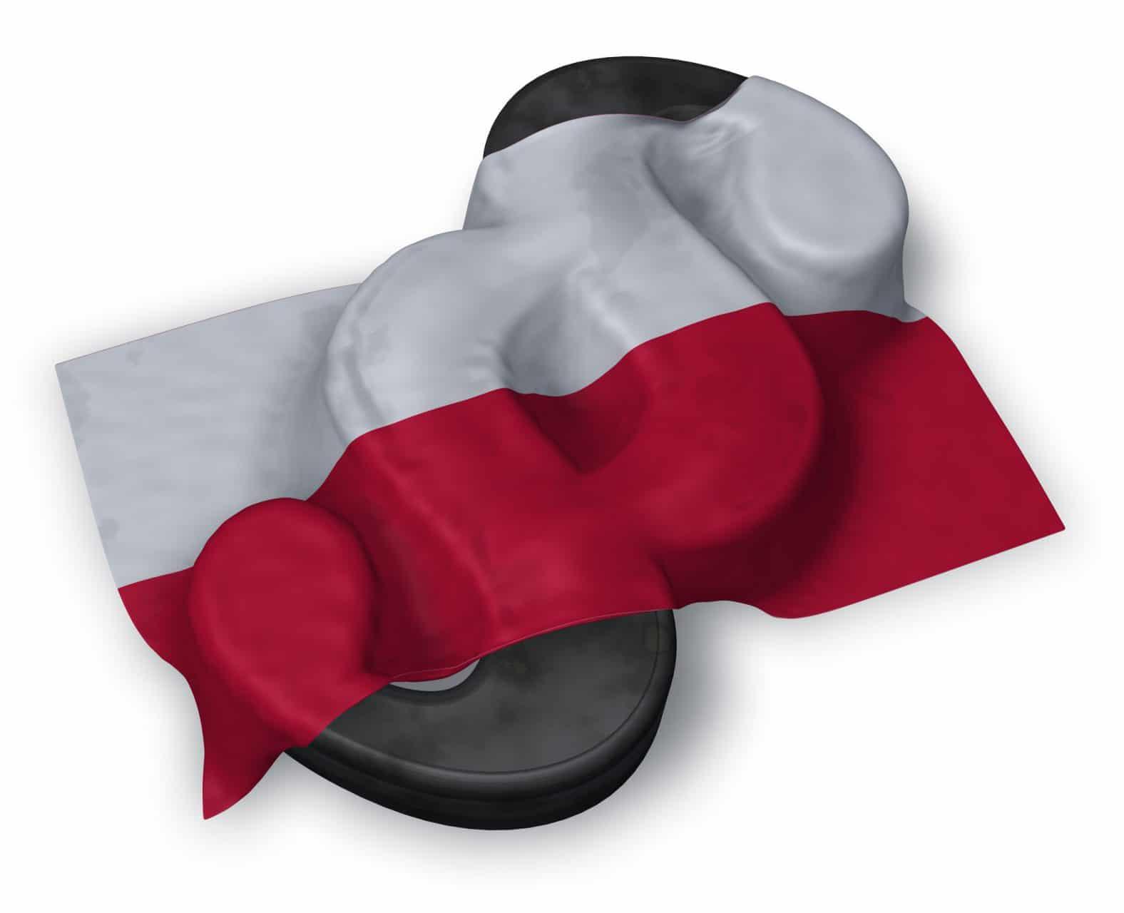 Rodo W Polsce Stan Dostosowania Polskiego Prawa Do Rodo